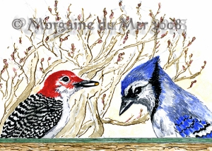 Blue Jay and Woodpecker ACEO