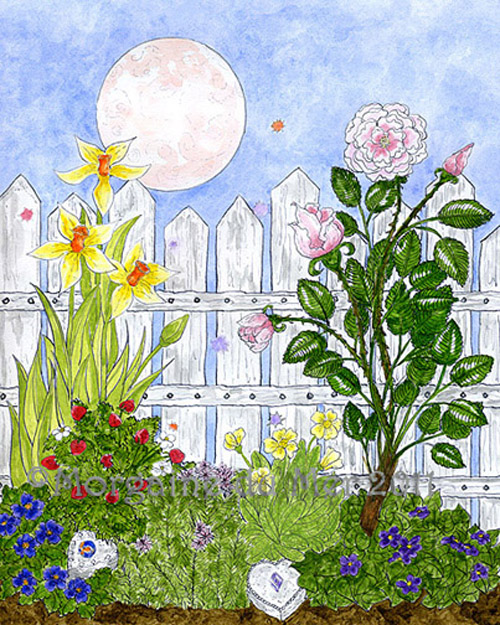 Fairy Attraction Garden Pink Full Moon Fine Art Print