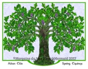 Magickal Oak Tree Spring Fine Art Print