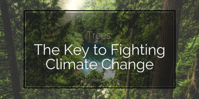 Barry-Nerhus-_-trees-to-fight-climate-change