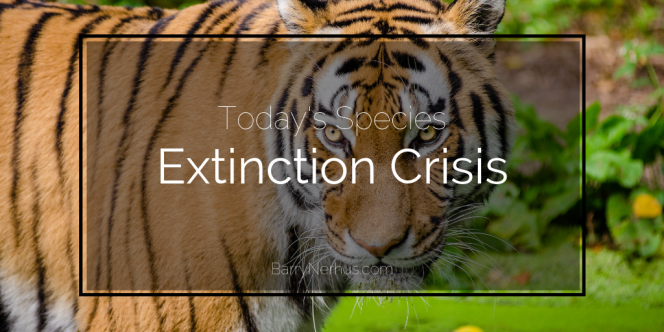 Barry-Nerhus-_-todays-species-extinction-crisis